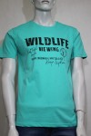 T-shirt męski wildfinder model 41 kolor 11 mint